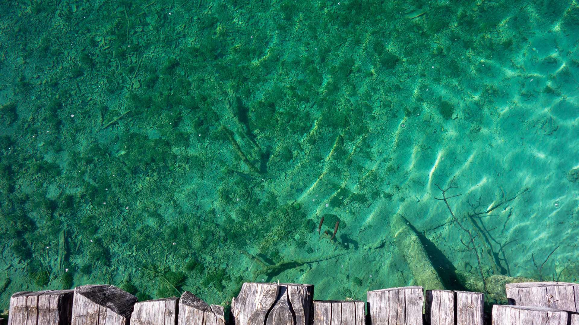 Fishing adventure Trogir